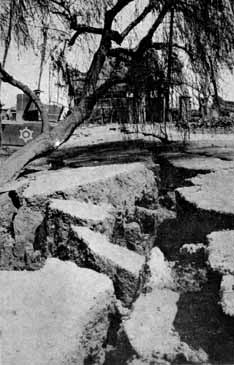 Tokyo1923earthquakemoreruptures